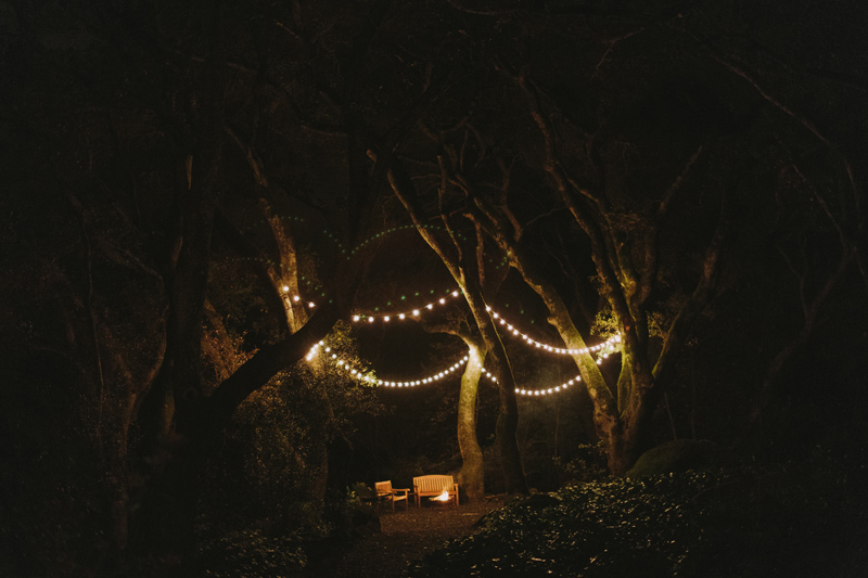 backyard-wedding