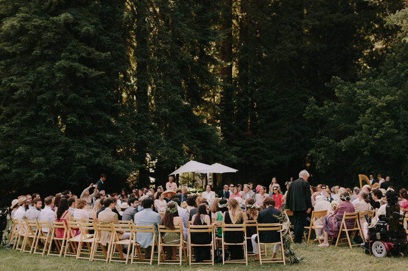 redwood-forest-wedding