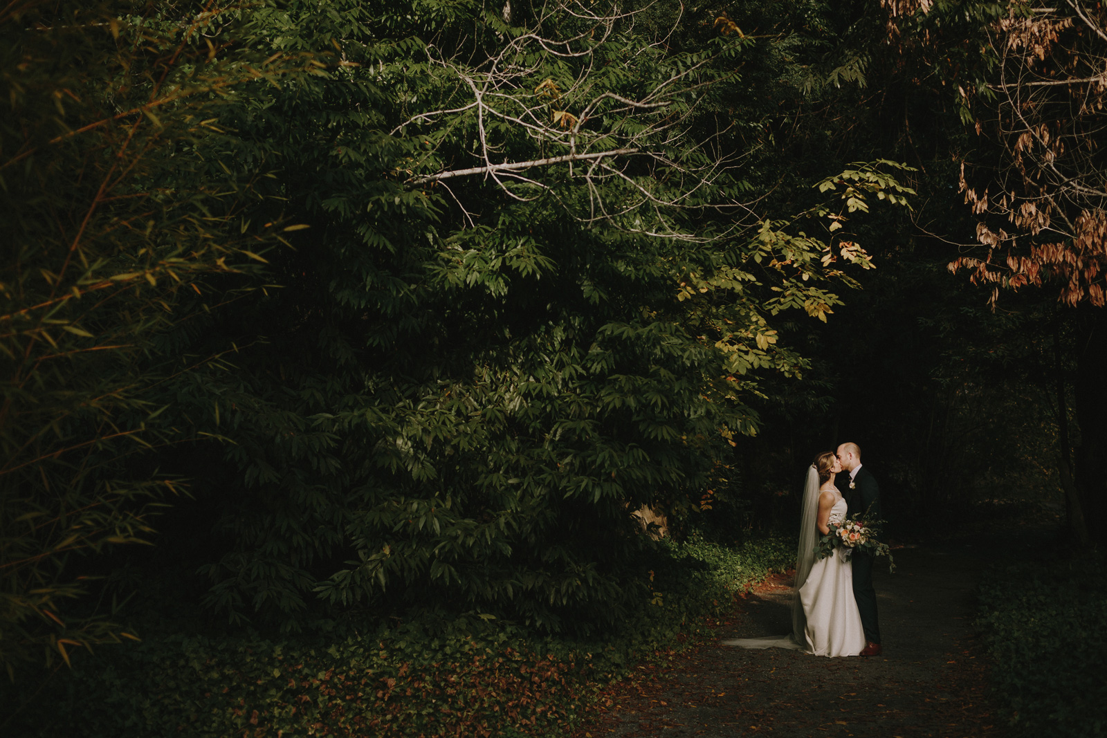 wedding-portrait-woods