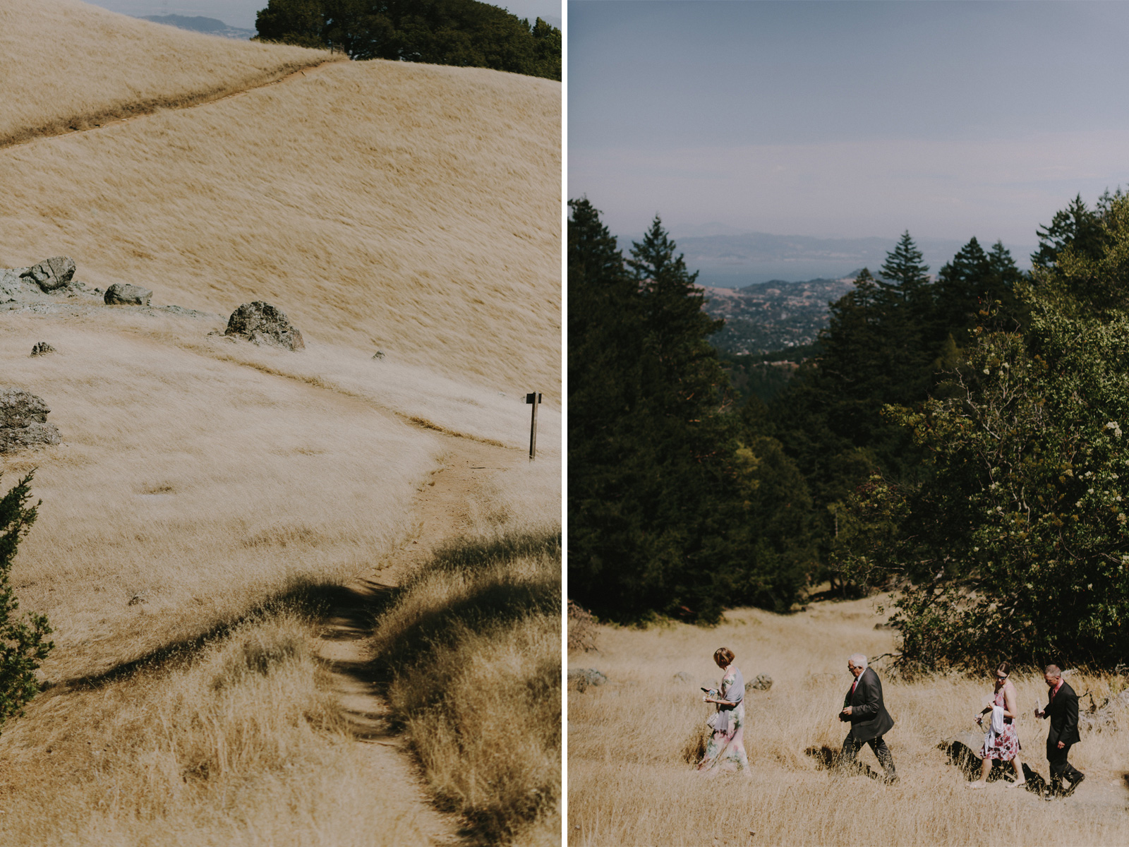 mount-tam-wedding