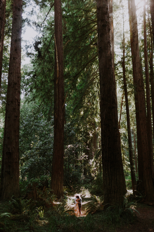 forest-portrait-session