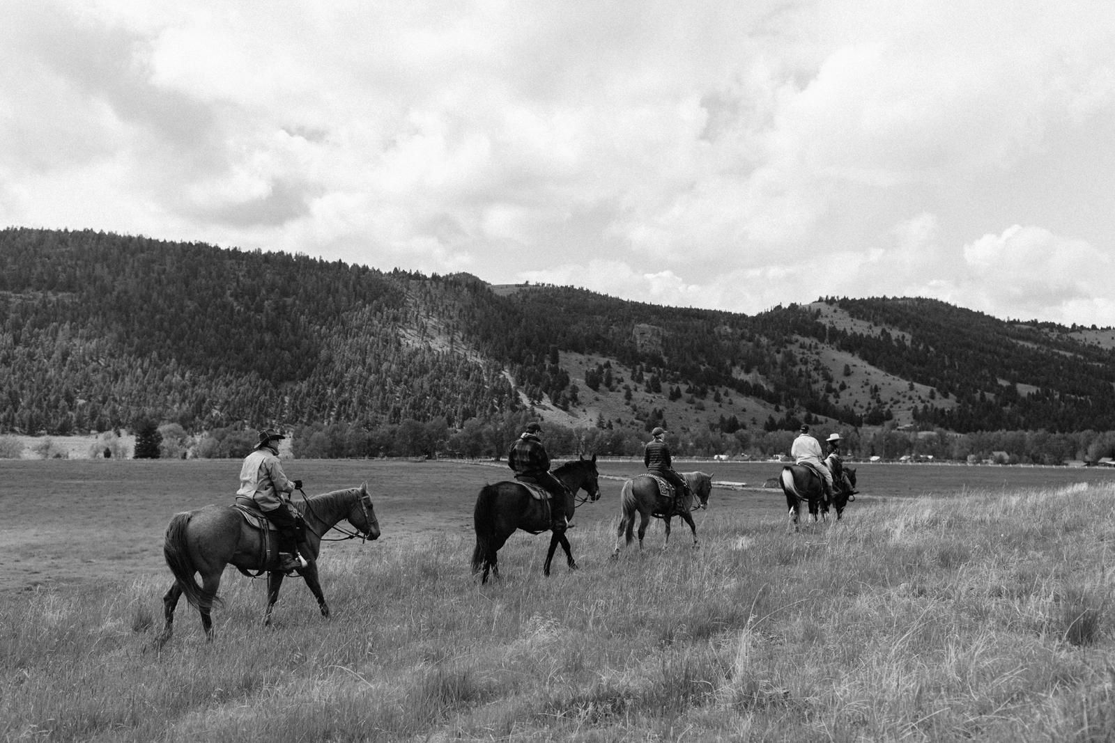 horse riding montana