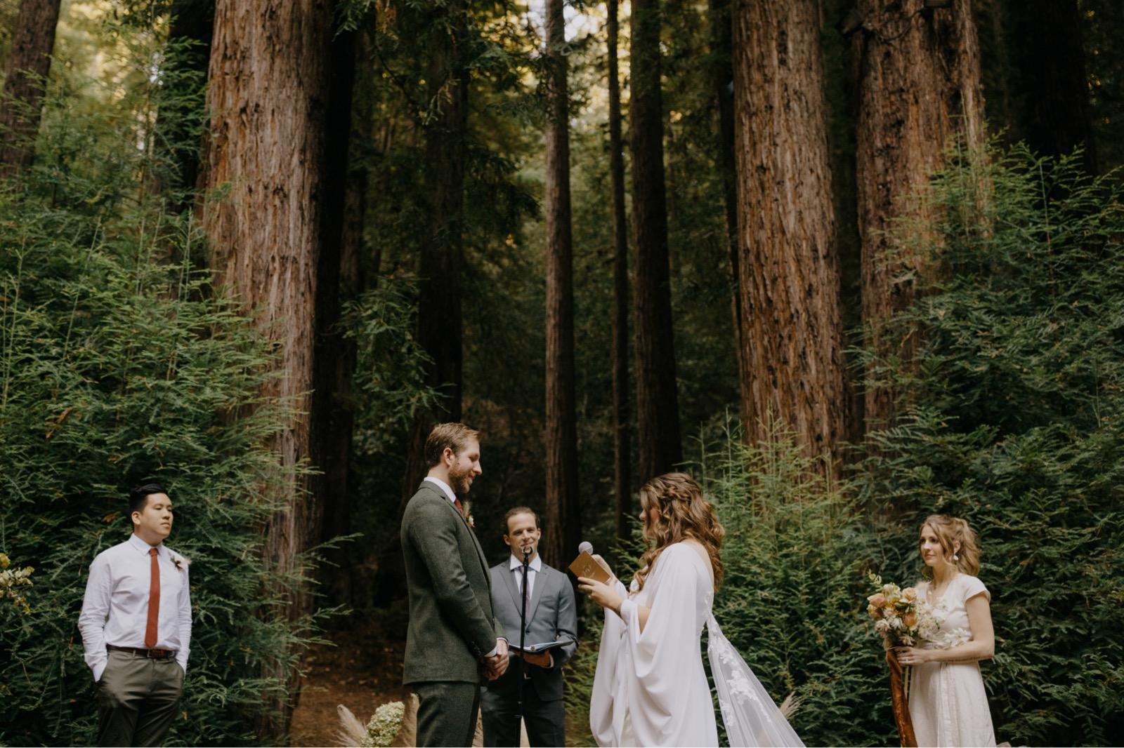 078_Emily & Jeff Wedding 0726_the-waterfall-lodge_forest_wedding_ben-lomond_intimate