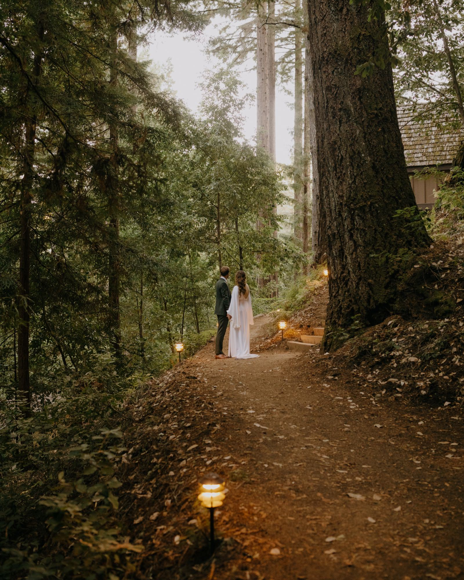 095_E&J 04429_the-waterfall-lodge_forest_wedding_ben-lomond_intimate