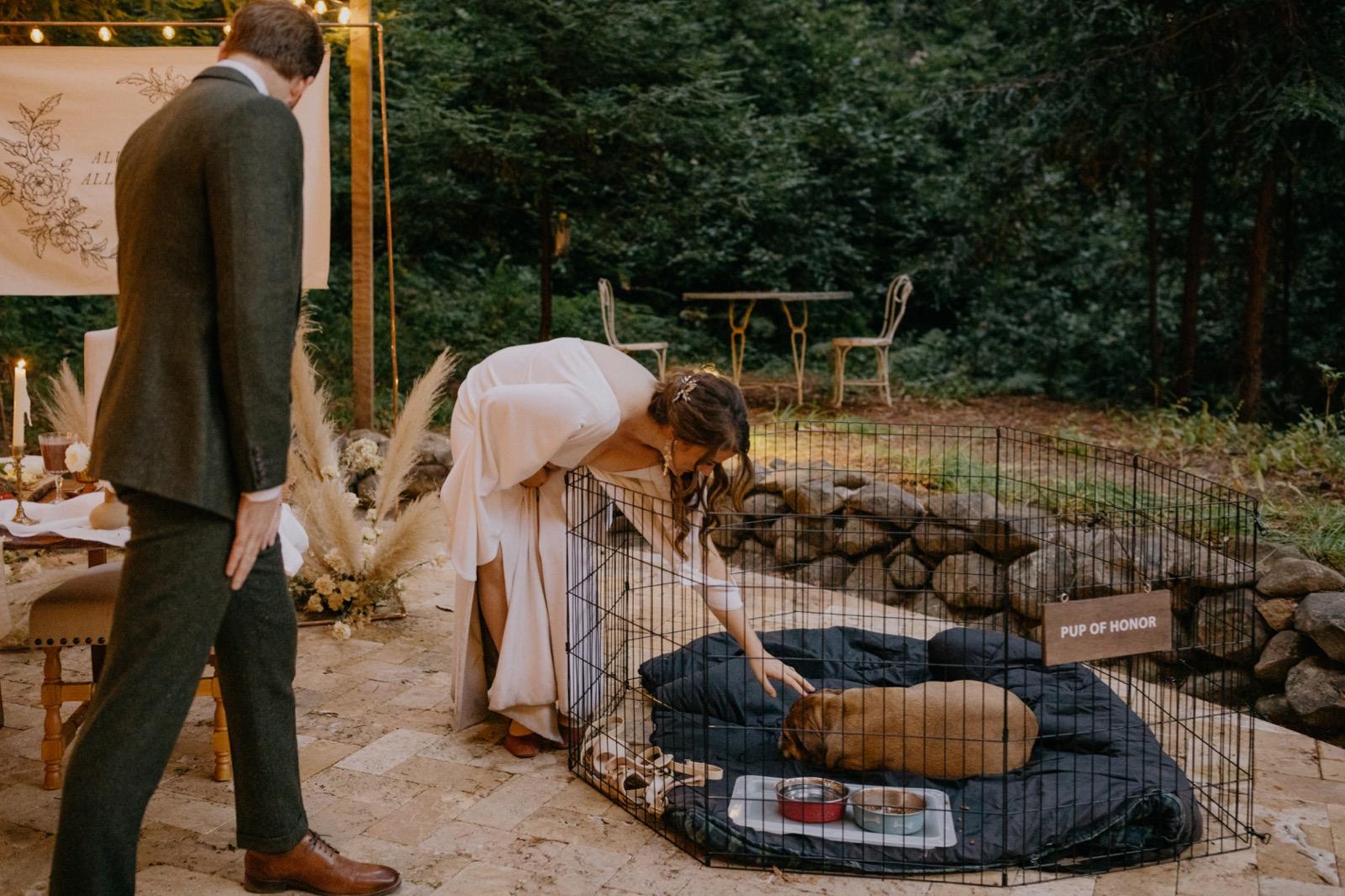 114_Emily & Jeff Wedding 0989_the-waterfall-lodge_forest_wedding_ben-lomond_intimate